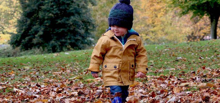 kinder-niedlich-im-freien-herbst-1031171 (Pixabay)